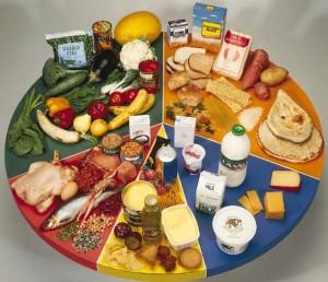 تغذیه و دوران شیردهی